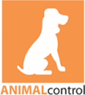 pic-dogshadow-animal_control