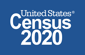 Census 2020 Small